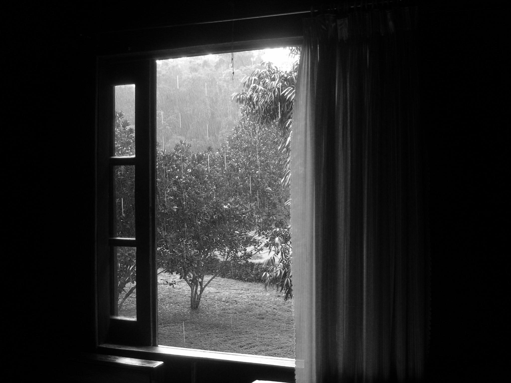 Fenetre sur la pluie vietnam pour 6 mois for La fenetre soleil